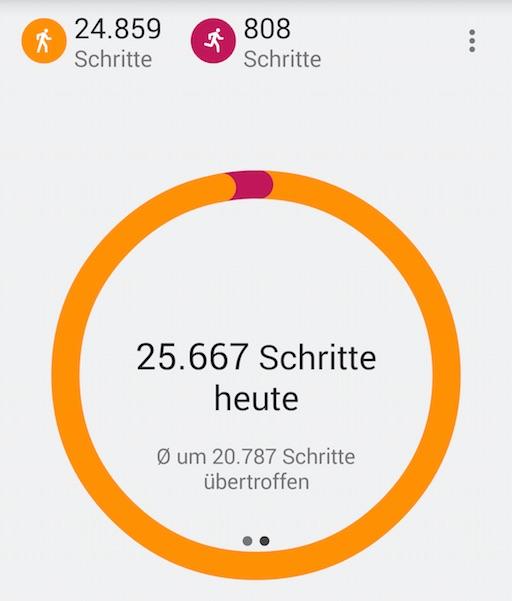25.000 Schritte an einem Tag sind umgerechnet ca. 19 Kilometer (Bild: Screenshot Google Fit App)