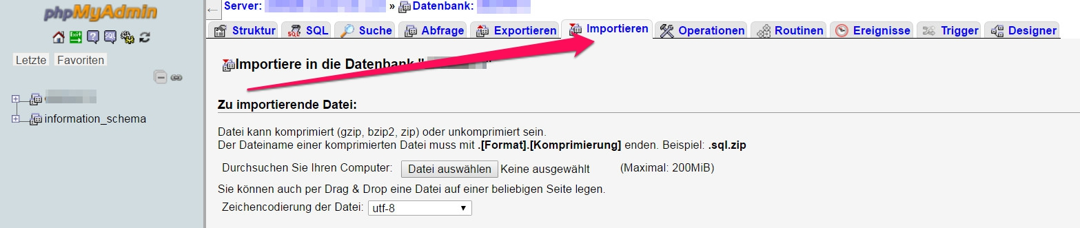 WordPress Datenbank importieren