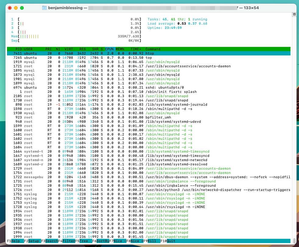 Ubuntu htop System Performance anzeigen